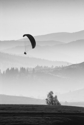 Flying in a light. Monochrome colors