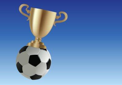 football - foot - ballon de foot - ballon - coupe -vainqueur - gagner - gagnant - réussite - succès