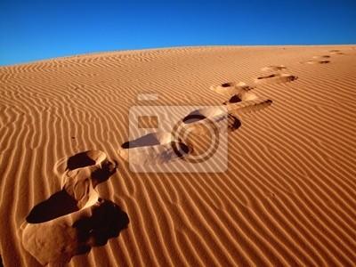 Footprints gehen über den Sand .