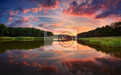Forest Park. Summer in Ukraine