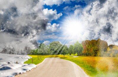 Bild Four season landscape - one year cycle