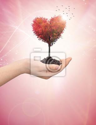 Frau an der Hand halten einen Baum Herz