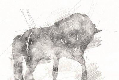 Bild freehand horse head pencil drawing