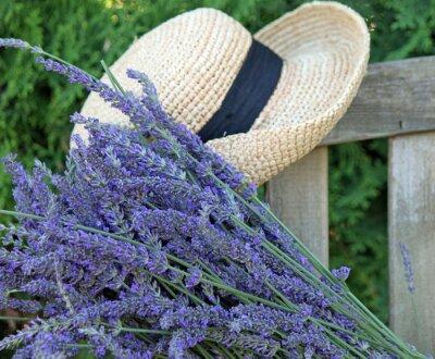 Bild Fresh Cut Lavender with Garden Hat