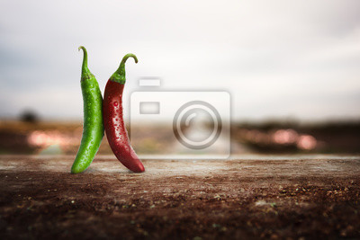 Bild Fresh red and green Mexican chillies