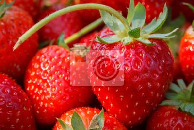Frische Erdbeeren Großansicht