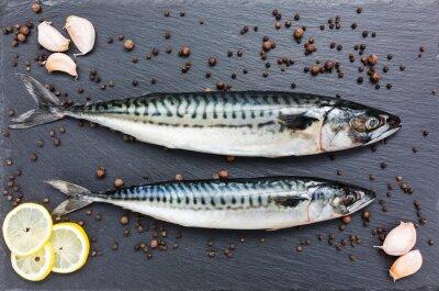 Bild Frische Makrele Fisch auf einer Schieferschneidebrett. Aufsicht