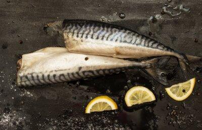 Bild Frische Schnitt Makrele Scheiben Zitrone, Salz, Pfeffer auf einem schwarzen Hintergrund