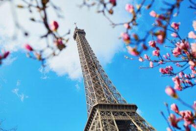 Bild Frühjahr in Paris