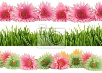 Frühjahrblüte Grenzen