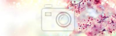 Bild Frühling Grenze oder Hintergrund Kunst mit rosa Blüte. Schöne Natur-Szene mit blühenden Baum und Sonnenaufgang