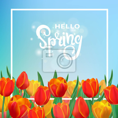 Bild Frühling Illustration mit Tulpen und Rahmen.