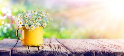 Bild Frühling - Kamillen-Blumen in der Teetasse auf Holztisch im Garten
