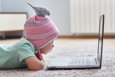 Bild Funny Quarantine Moments. A parrot sits on the head of a child in a hat. The girl looks at her laptop. The concept of learning at home during quarantine and self-isolation from coronavirus infection