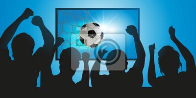 fussball - fuß - footballeur - aber - marquer - ballon - spectateur - TV - sport - spiel - sportif - télé - média