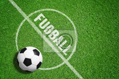Fussball Rasen Leinwandbilder Bilder Bundesliga