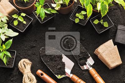 Bild Gardening tools and plants
