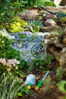 Gartengeräte in der Nähe von Phlox pfriemenförmig