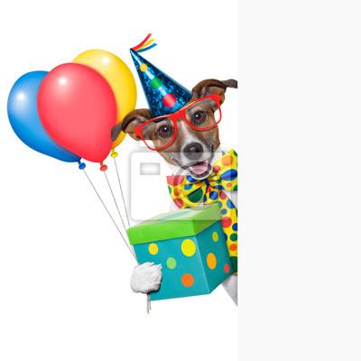 Geburtstag Hund Leinwandbilder Bilder Jack Russell Kompliment
