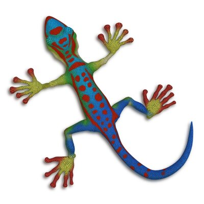 Bild Gecko Eidechse