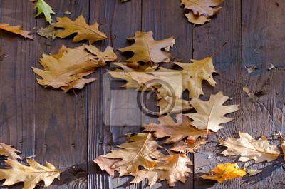 Gefallene Eichenblätter auf dem Holzdach