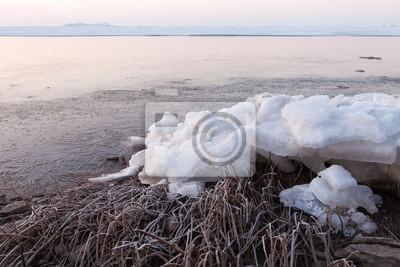 Gefrorene Küste mit Schilf und Klumpen von Eis