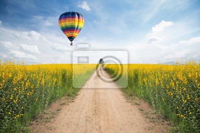 Bild Gelbe Blume Feld mit einer Straße
