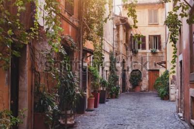 Bild gemütliche Straße in Rom, Italien
