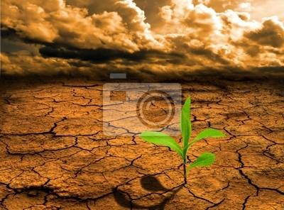 Globale Erwärmung-Konzept