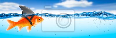 Bild Goldfish With Shark Fin Costume - Brave Ambitious Entrepreneur/ Business Vision Concept