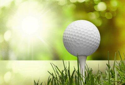 Bild Golf.