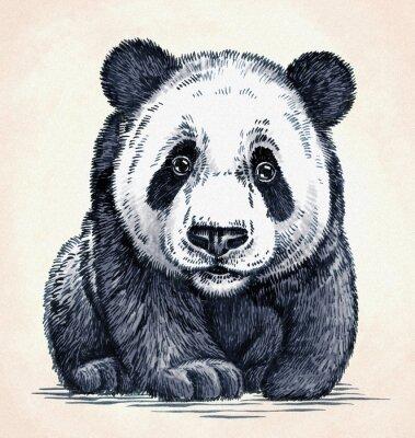 Bild Gravieren tinte zeichnen panda illustration