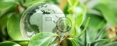 Bild green earth concept glass sphere