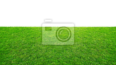 Bild Green grass meadow field from outdoor park isolated in white background with clipping path. Outdoor countryside meadow nature.