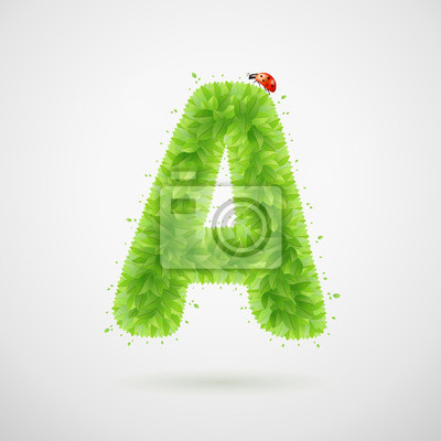 Green leaves alphabet with ladybird. Ecology summer. Letter A