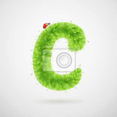 Green leaves alphabet with ladybird. Ecology summer. Letter C