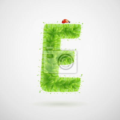 Green leaves alphabet with ladybird. Ecology summer. Letter E