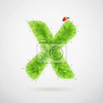 Green leaves alphabet with ladybird. Ecology summer. Letter X