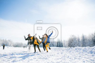 Bild Group of young friends on a walk outdoors in snow in winter forest, having fun.
