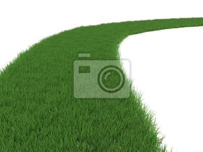 Grün grasbewachsenen Weg isoliert auf weiß