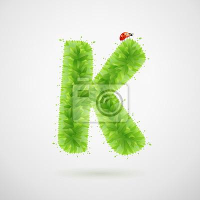 Grüne Blätter Alphabet mit Marienkäfer. Ökologie Sommer. Buchstabe K