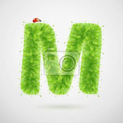 Grüne Blätter Alphabet mit Marienkäfer. Ökologie Sommer. Buchstabe M