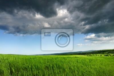 Grüne frische Feld, Blau Dramatischer Himmel und graue Wolken