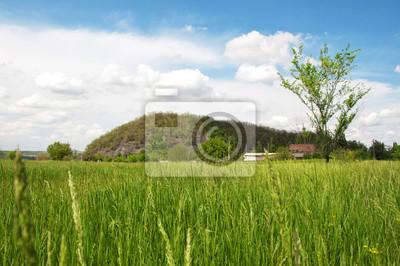 Bild Grünes Feld und blauer Himmel