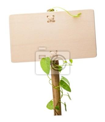 Bild grünes Schild