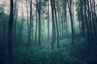Grunge textured dark green foggy forest landscape.