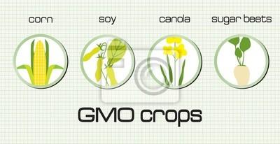 GVO-Pflanzen, die auf dem grünen Hintergrund verbreitet