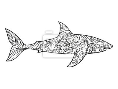 Bild Hai Ausmalbilder Für Erwachsene Vektor