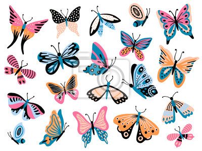 Bild Hand drawn butterfly. Flower butterflies, moth wings and spring colorful flying insect isolated vector collection