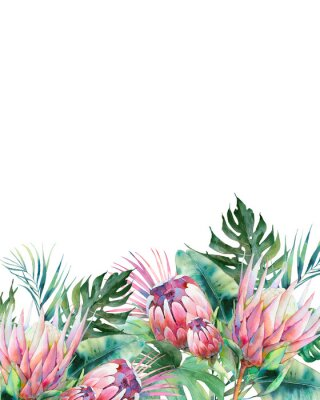 Bild Hand drawn greeting card design with exotic leaves and protea flowers isolated on white background. Palm tree, banana leaves, mostera plants
